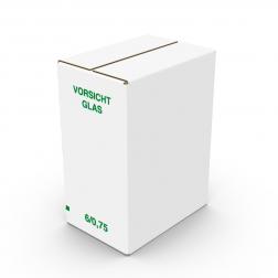 Faltkarton stehend 6 x 0,75l 310 mm hoch