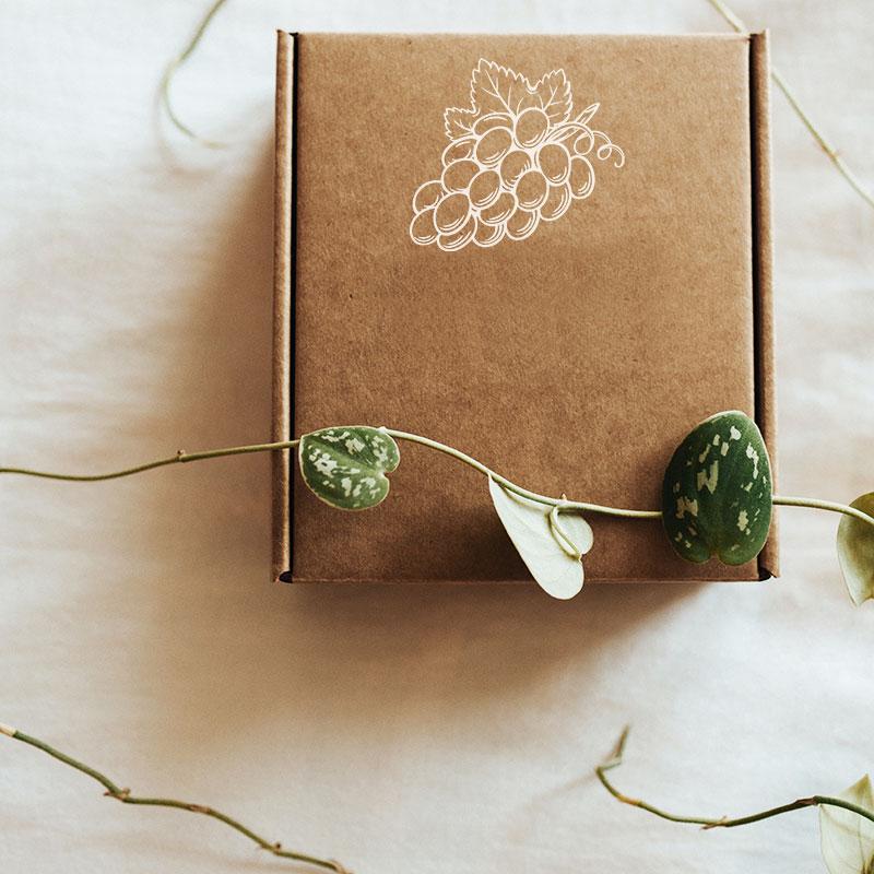 Verpackung auf Tisch liegend mit Pflanze